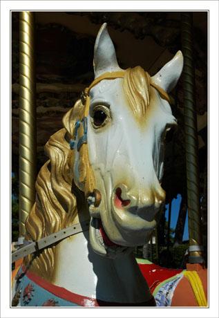 BLOG-DSC_1763-cheval manège le Moulleau