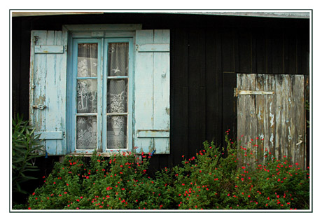 BLOG-DSC_2923-façade cabane Cap-Ferret