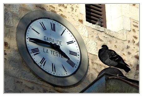BLOG-DSC_3428-pendule et pigeons St Vincent 2