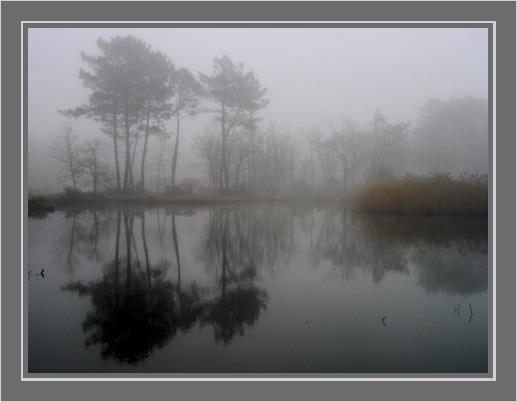 BLOG-IMG_2690-étang sous la brume