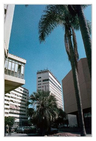 blog2-83-img2135-casa-moderne.jpg