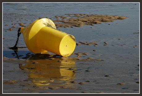 BLOG-DSC_1323-bouée jaune conche