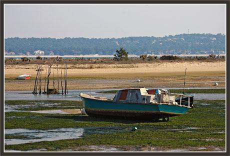 BLOG-DSC_1343-bateau et algues conche CF
