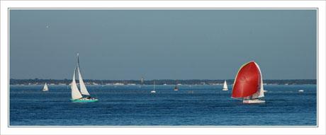 BLOG-DSC_1555-spi rouge et voilier blanc Arcachon