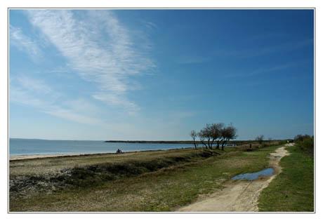 BLOG-DSC_1735-plage et sentier du littoral Audenge