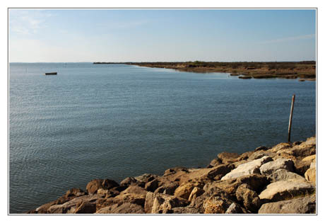 BLOG-DSC_1746-Bassin depuis sentier Audenge