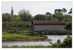 BLOG-DSC_2232-maison Fleury et église du Teich