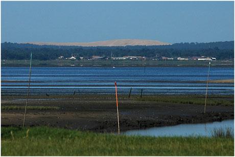BLOG-DSC_2679-rec-dune