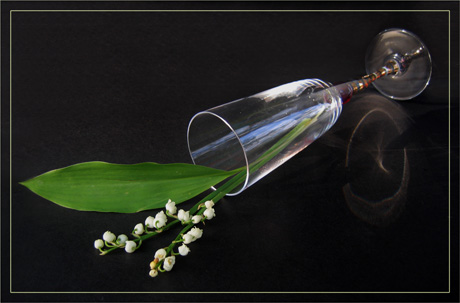 BLOG-IMG_0152-flûte et muguet