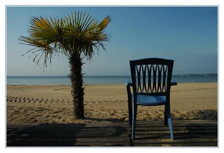 BLOG-DSC_3010-chaise bleue, palmier, plage, lac