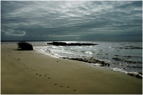 BLOG-DSC_3372-plage du Teich  Arcachon au loin