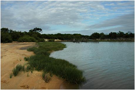 BLOG-DSC_3389-estey marée haute et sentier du littoral