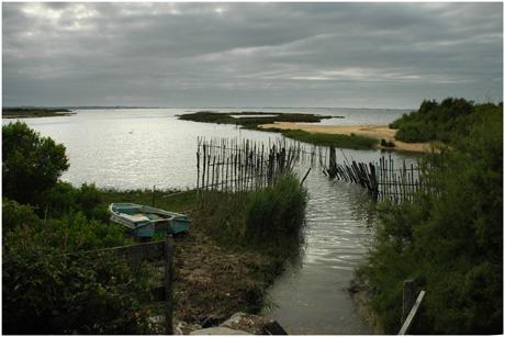 BLOG-DSC_3391-écluse, estey et Bassin marée haute