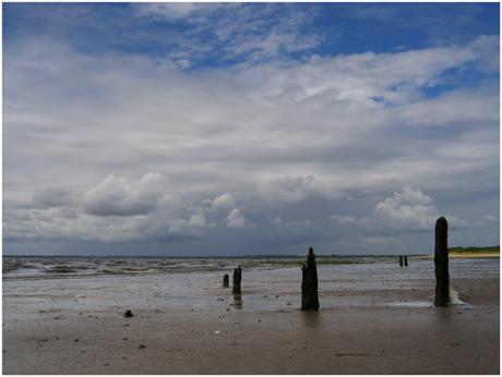 BLOG-IMG_0364-éclaircie plage du Teich