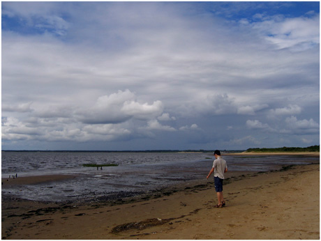 BLOG-IMG_0369-littoral du Teich