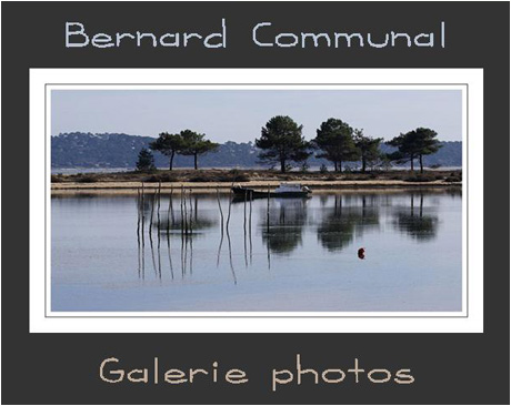 Galerie photo Bernad Communal