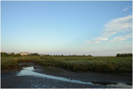 BLOG-DSC_4675-Gujan et lycée de la Mer depuis le port de la Mole