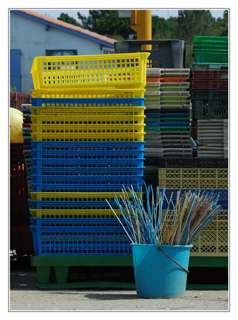 BLOG-DSC_4804-ostréiculture et plastique