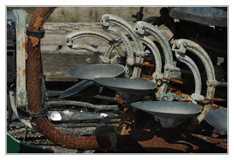 BLOG-DSC_4815-peseuse calibreuse huîtres