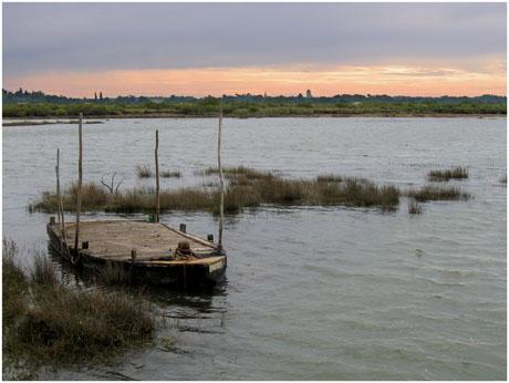 BLOG-IMG_0579-plate Certes et rivages Audenge