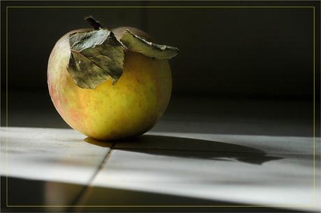BLOG-DSC_4757-pomme et son ombre