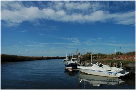 BLOG-DSC_5556-sortie port et île de Malprat