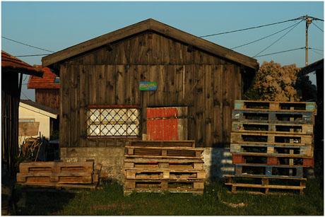 BLOG-DSC_5676-Marvin et palettes bois couleur