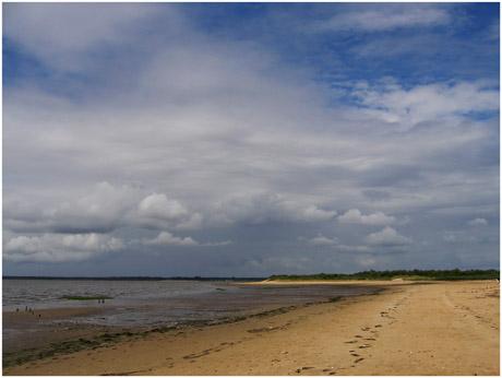 BLOG-IMG_0371-éclaircie plage du Teich