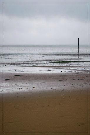 BLOG-DSC_5711-Grisaille plage du Teich