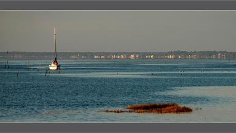 BLOG-DSC_6026-retour port Barbotière-face Andernos2