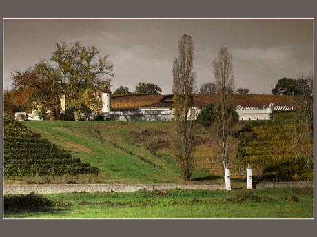 BLOG-IMG_0856-château Montus effet couleur
