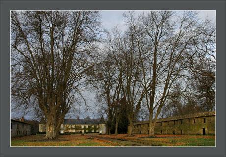 BLOG-DSC_6035-château Teich