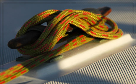 BLOG-DSC_6242-corde verte et rouge au soleil