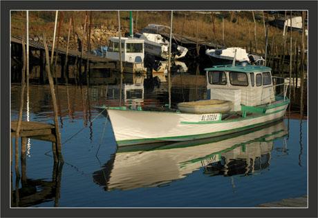 BLOG-DSC_6291-bateau blanc-vert