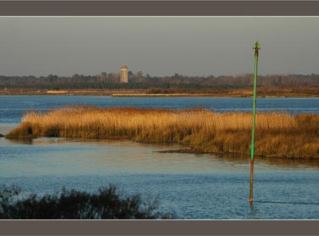 BLOG-DSC_6359-embouchure Leyre, Bassin et Audenge