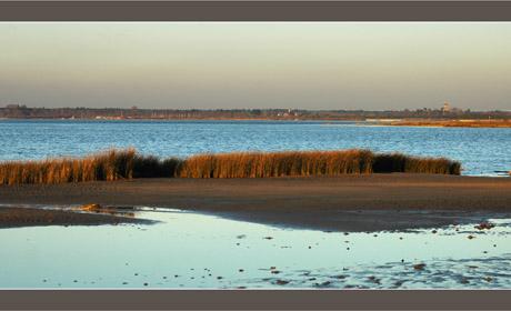 BLOG-DSC_6368-embouchure Leyre, Bassin et Audenge