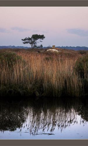 BLOG-DSC_6402-maison bordde Leyre crépuscule