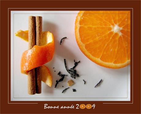 BLOG-IMG_0972-cannelle, orange 2009
