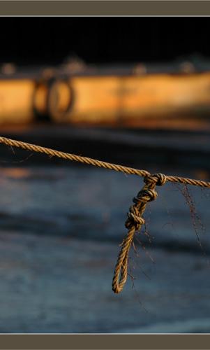 BLOG-DSC_6519-corde et ponton jaune