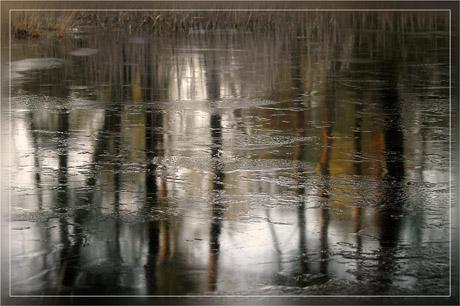 BLOG-DSC_6614-forêt étang gelé