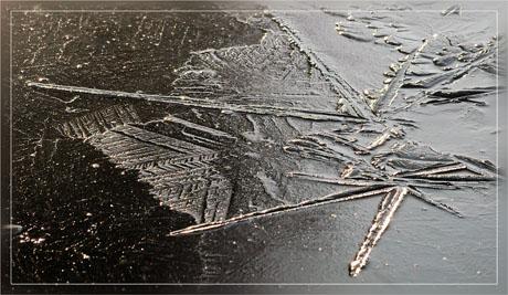 BLOG-DSC_6659-surface gelée