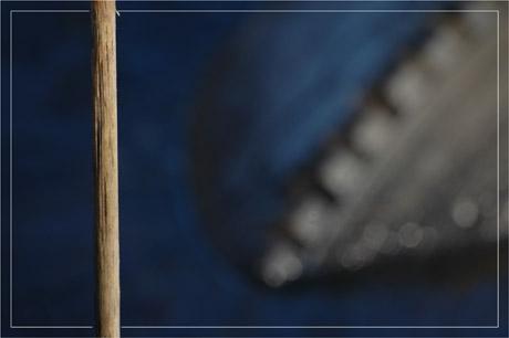 BLOG-DSC_6672-tige et pneu flou