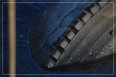 BLOG-DSC_6673-tige floue et pneu