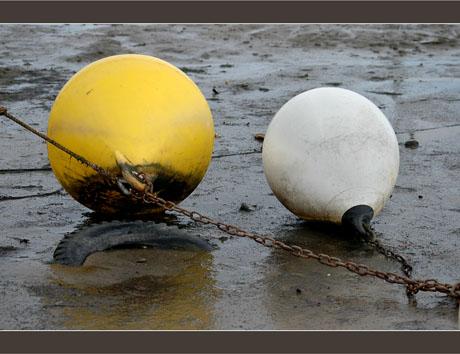 BLOG-DSC_6777-bouées jaune et blanche
