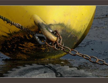 BLOG-DSC_6789-bouée jaune