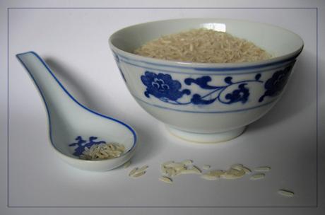BLOG-IMG_1136-bol riz et cuillère