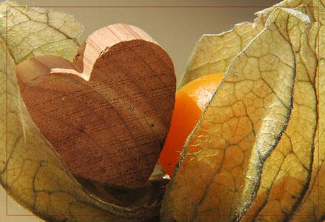 BLOG-DSC_7106-amour en cage et coeur bois