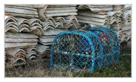 BLOG-DSC_7437-panier à crabes et tuiles chaulées