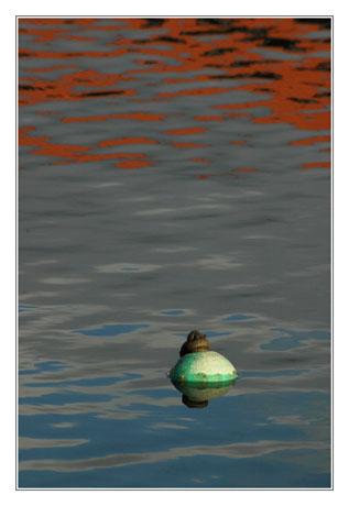 BLOG-DSC_7496-bouée verte et reflets rouges