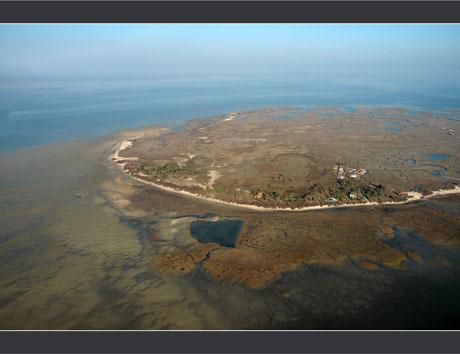 BLOG-DSC_7663-rivage sud et ouest île